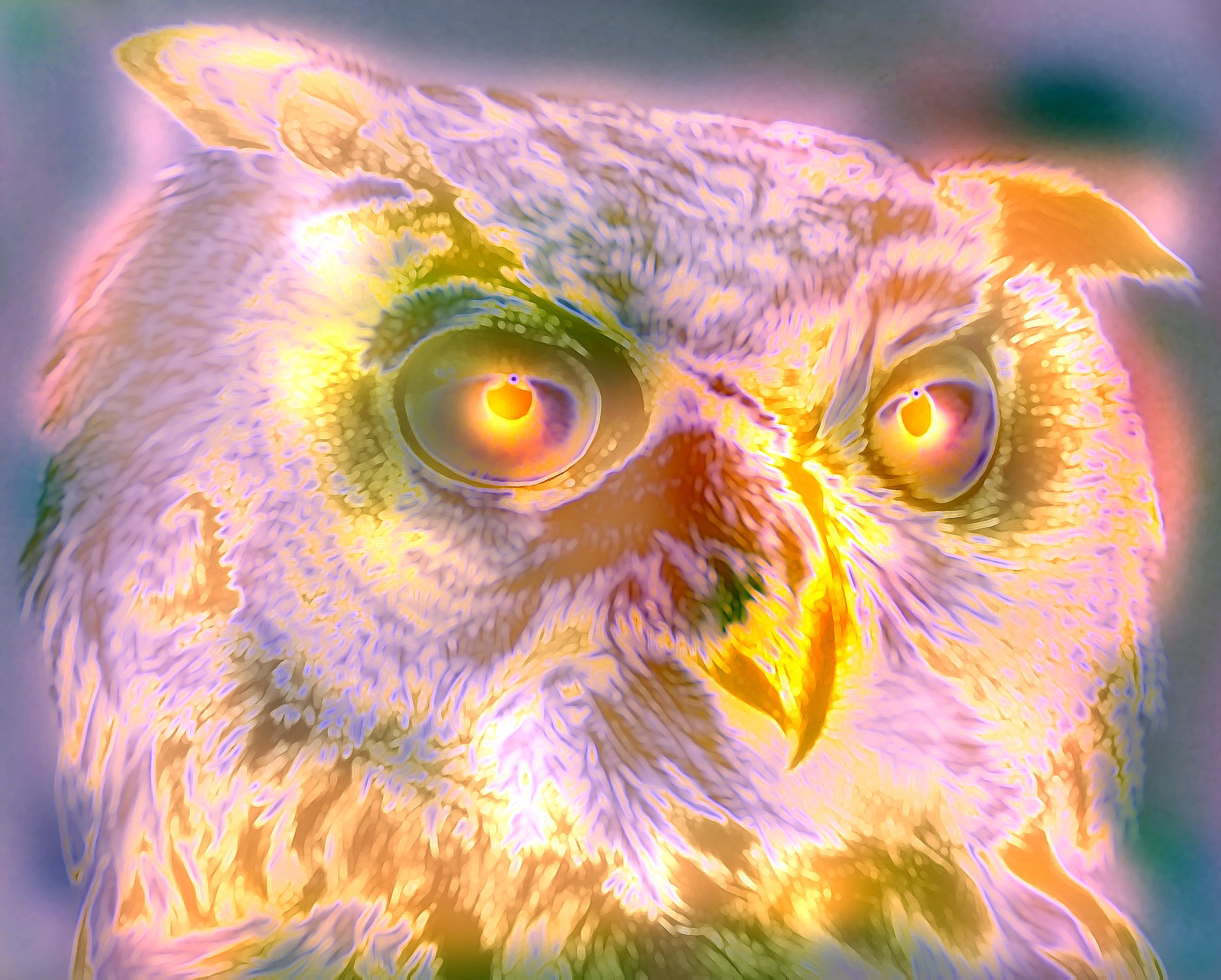 Owl2-
